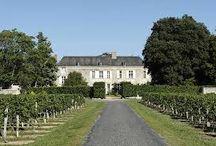 Château de Minière / Visite du vignoble et des chais au Château Ambe de Minière à Bourgueil en Loire Réservez avec winetourbooking.com