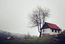 photography/film