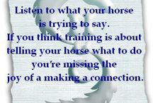 50 Young horse training tips / Wondering how you can make training easier for you and your young horse? We'll help you keep the horse in the conversation with a new tip added every day until we get to 50.