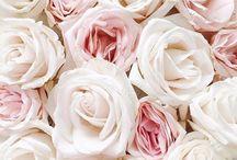 Цветы все