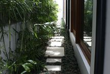Side garden path