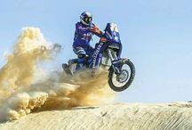 Dakar Hally 1  ♡♡♡✔