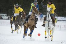 Cortina Winter Polo 2013