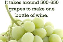 WINE FUN FACTS