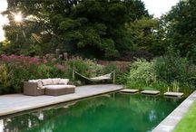 Water / garden
