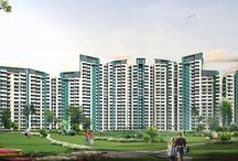 Buy vaastu compliant homes and Apartments in Noida