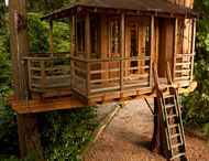 Tree Houses / by National Wood Flooring Association