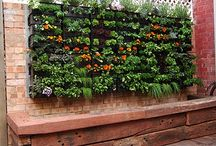 Vertical Grow Walls / The Urban Garden Get more helpful resources, innovative ideas, and community connections at www.phgrowers.com or @phgrowers on twitter!