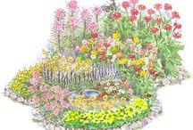 gardening / by Tracy Raptis