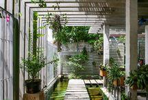 knee garden 뜰