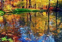 Natural,Landscape,Természet. / A természet szép.és változatos.