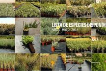 To garden / All about gardening and plants ..