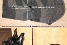 DIY Cat Clothes