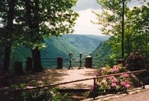 PA Grand Canyon / The Pine Creek Gorge, more well-known as the PA Grand Canyon, is gorgeous during any season!