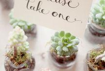 Wedding ♡ Thank you gift ideas