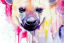 animal ilustration