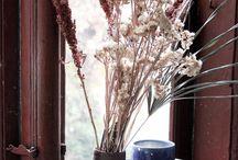 Dekoration / In der Rubrik Dekoration wird es inspirierend werden. Wir zeigen dir tolle Deko-Tipps und saisonale Produkte, die dein zu Hause schöner aussehen lassen.