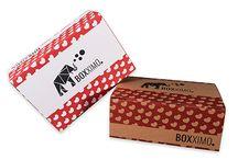 Transportverpackung S / Transportverpackung S vom Verpackungsshop Boxximo. Individuelle Transportverpackungen & Versandverpackungen ab Auflage 1 Stück jetzt bei www.boxximo.de - Ihrem Verpackungsprofi im Internet.