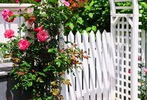 ~ garden ~