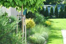 tökéletes kert