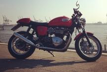 triumph bike / by Muchlis Yusuf