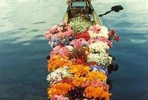 Make it Flowery