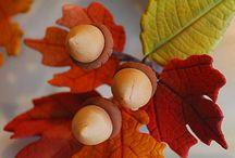 Torta autunno