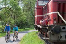 Radeln und Wandern in der Region Vogelsberg / 9 Zertifizierte Rundwanderwege mit 3 bis 6 Stunden Gehzeit hat die Region zu bieten, dazu einen 115 km langen Weitwanderweg, den Vulkanring Vogelsberg. Für Radfahrer schlängelt sich das Band aus Feinasphalt des Vulkanradweges (94 km) durch die Landschaft und wir ergänzt durch den Südbahnradweg (33 km) und die Niddaroute (93 km). Der Ideale Ort für ein Wander- oder Radwochenende.