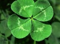 The Luck of the Irish / St. Patricks Day and everything Irish. / by Great Expressions Dental Centers