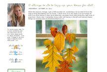 Blog Designs / by Tamara Rice