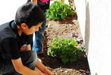 Children and Gardening