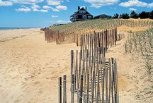 Inside East Hampton / A look into all of the beautiful things to do and see in one of our favorite towns, East Hampton.