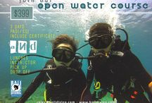 DIVE COURSES / Learning to Scuba Dive or Advancing your education, while you are in Bali.