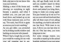 Lezen korte verhalen