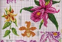 cross stitch orchidea