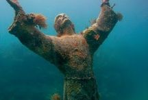 Jason deCaires Taylor / by Marion Wiering