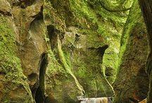 természet képek / szép képekről