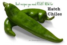 Hatch Chile Recipes