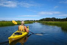 Long Island Kayaking / Kayaking on Long Island, NY