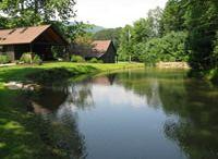 Pond Construction Ideas