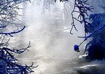 winterwonderlands