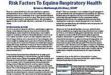 Equine Educational Articles / All articles are written by Lauren Marlborough of HealthEquine Therapies to help further ones equine knowledge and provide the best quality of life to our equine partners.