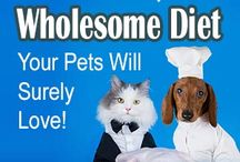 Pet Food Diet Homemade