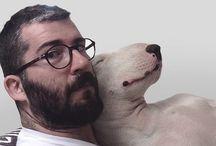 Rafa's dog