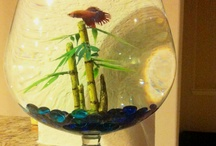 Fishy babysitting / by Tonya Dassel