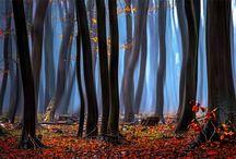 Photography / Animals, Plants & Nature / Flowers, Trees & Plants / Secret, mistic  life..