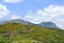 Panorama / Paesaggi Abruzzesi