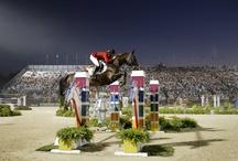 Monumentale paardenliefhebbers / Het Monument van de Maand mei is Koetshuis Weizigt in Dordrecht. De heer De Roo sr. liet in 1886 het rijk gedecoreerde Koetshuis bij zijn landgoed bouwen. In dit monumentale pand worden nu geen paarden meer gestald, maar aan de luxe afwerkingen van de paardenboxen is nog altijd te zien dat De Roo een groot paardenliefhebber was. De kopergravures boven de ruiven met namen als Zephyr, Selena en Cesar doen vermoeden dat de paarden er nog elk moment zullen terugkeren.