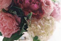 Floral 'n gardening