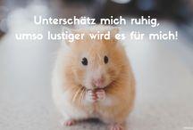 Motivationssprüche Lustig / Motivationssprüche: Tolle Sprüche und Zitate zum Thema Lustig.